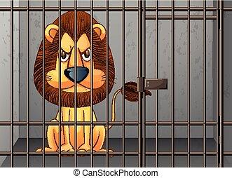 essendo, gabbia, leone, chiuso chiave