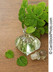 Essential aroma peppermint oil and fresh mint on wooden...