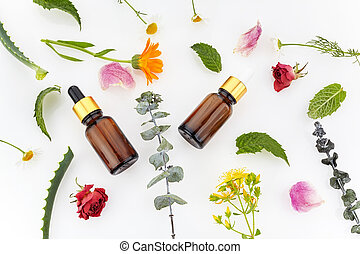 essential oil and herbs on a white background. Top view