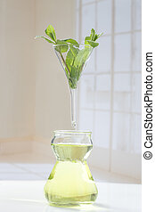 essential oil extraction symbol Peppermint essential oil