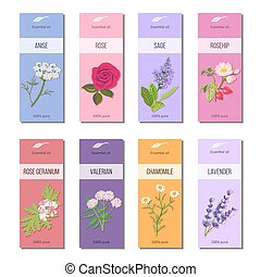 Essential oil labels set. Rose, anise, sage, rosehip, Lavender, rose Geranium, Chamomile, Valerian herb. 8 stripes collection For cosmetics perfume health care products aromatherapy