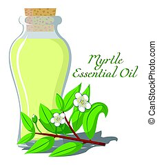 Essential oil of Myrtle