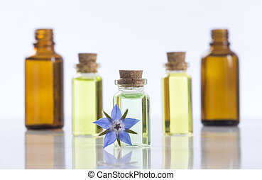 essential oils and medical flowers of borage