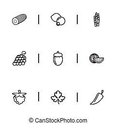essere, lattina, set, mobile, icons., uva, pepe, editable, usato, include, simboli, 9, infographic, ui, web, verdura, tale, more., zucchini, design.