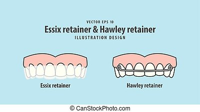 Essix retainer & Hawley retainer illustration vector on blue background. Dental concept.