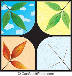 estações, folhas, através