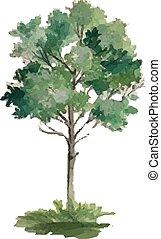 estações, vetorial, -, árvore
