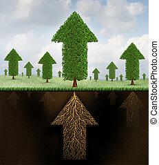 estabilidad, financiero