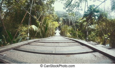 Establishing shot of a wooden plank bridge over a jungle. -...