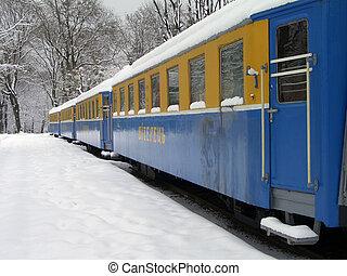 estación, nevoso