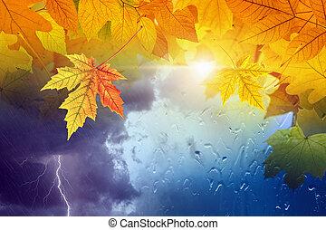 estacional, concepto, pronóstico, otoño, plano de fondo, otoño, tiempo
