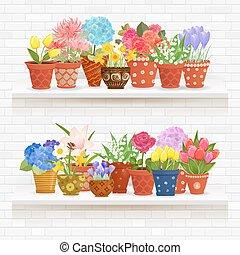estantes, en, un, pared, de, ladrillo blanco, con, encantador, flores, plantado, en