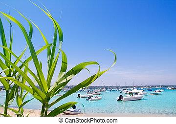 Estany des Peix lake in Formentera