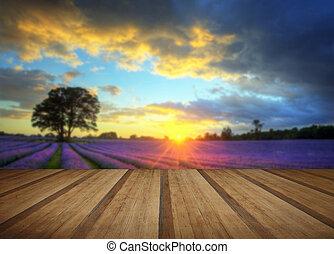 estate, atmosferico, pavimento, legno, vibrante, sopra, lavanda, tramortire, tramonto, campi, assi