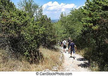 estate, camminare, albero, parco nazionale, traccia, segno, scia, croazia, viaggiatori