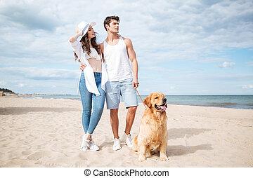 estate, camminare, spiaggia, coppia, cane