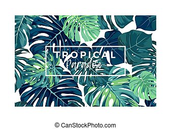 estate, cartolina, verde, leaves., monstera, tropicale, vettore, palma, disegno