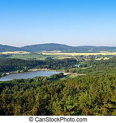 estate, chiaro, cielo, lago, foresta, sotto, piccolo