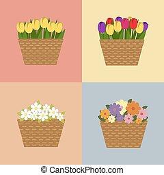 estate, fiori, collezione, colorito, primavera
