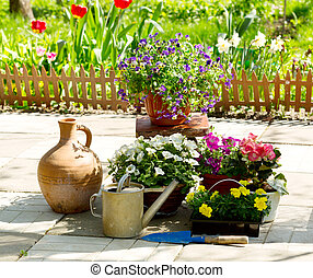 estate, fiori, giardino