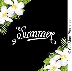 estate, frangipani, foglie, tropicale, verde, fiori, bordo