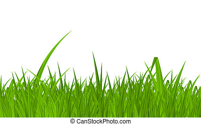 estate, illustration., astratto, grass., vettore, fondo