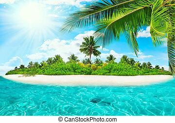 estate, isola, entro, oceano, tropicale, intero, giorno,...