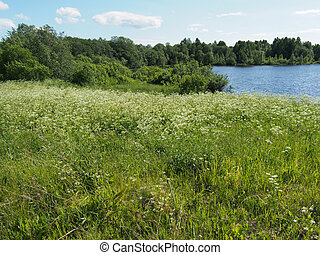 estate, lago