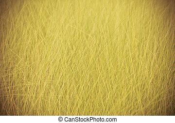 estate, natura, primavera, Estratto, fondo, erba, o