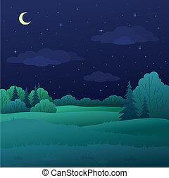 estate, paesaggio, foresta, notte