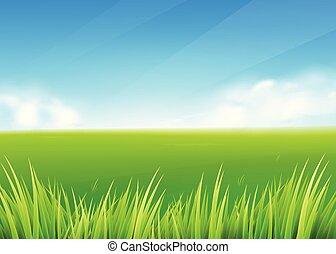 estate, prato, natura, primavera, field., fondo, erba verde, o, paesaggio