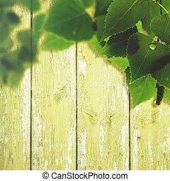 estate, Recinto, legno, primavera, Estratto, Sfondi, fogliame