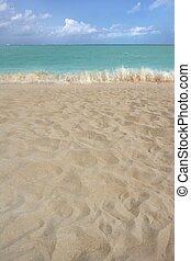 estate, riva, sabbia, linea costiera, spiaggia, prospettiva