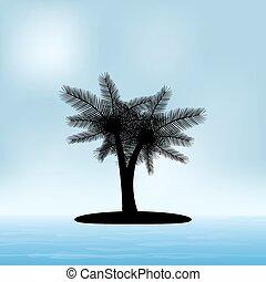estate, silhouette, marina, soleggiato, albero, palma, giorno