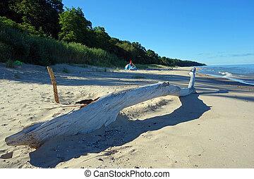 estate, spiaggia, campeggio