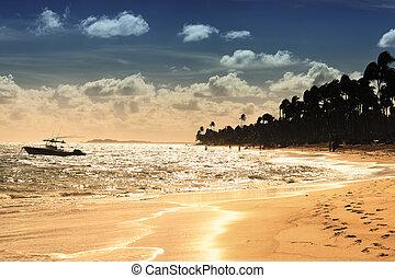 estate, spiaggia, caraibico, tramonto, barca