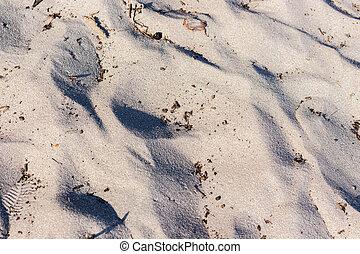 estate, spiaggia sabbia, linee