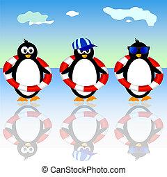 estate, vettore, tre, illustrazione, pinguino