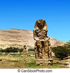 estatuas, egipto, colosos, memnon, gigantesco, luxor