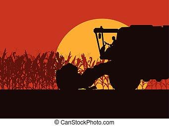 este, aratógép, fény, gabonaszem, reggel, mező, vektor, vagy, táj