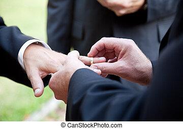este, casamento, anel, -, homossexual