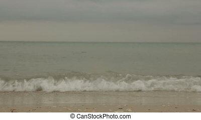 este, tengerpart, homokos, hab, lenget