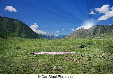 esteira yoga, ligado, campo verde, perto, montanhas