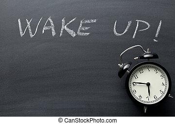estela, blackboard., arriba., reloj, alarma
