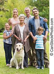 estendido, parque, animal estimação, seu, cachorro familiar