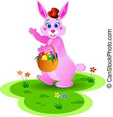 ester, coniglietto