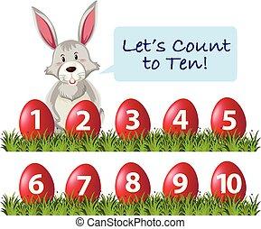 ester, conteggio, numero, coniglio