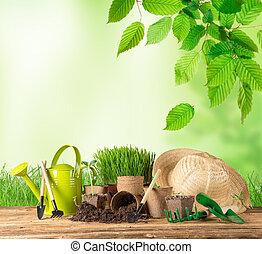 esterno, attrezzi gardening, e, plants.