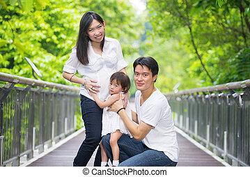 esterno, famiglia, incinta, foto, asiatico, madre