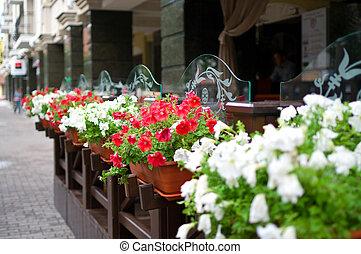 esterno, terrazzo, ristorante